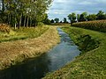 Zoppè di San Vendemiano - Corso d'acqua nell'area dei palù - Foto di Paolo Steffan.jpg