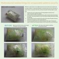 'Multicoloured vaseline patterns used for tamper evidence' test.png