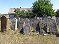 Єврейське кладовище (Підгайці) 2015 2.JPG