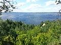 Вид с круч между Халепьем и Витачевом - View from cliffs between Halepya and Vytachiv - panoramio.jpg
