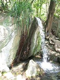 Водоспад в Алупкінському парку.jpg