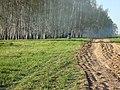 Дорога для катания на мопеде - panoramio.jpg
