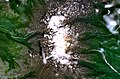 Комплекс вулканов Алней-Чашаконджа (Камчатка).jpg
