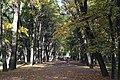 Летний сад. Центральная аллея. 2008 г..JPG
