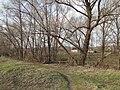 Мостик через Теплый ручей в Малой Приваловке - panoramio.jpg