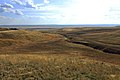 Овраг на склоне Утиной Горы - panoramio - Сергей Метик.jpg