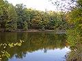Осенний ставок - panoramio.jpg