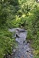 Реката Камештица во Нежилово (1).jpg