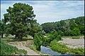 Река Чардым - panoramio (1).jpg