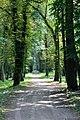 Старадаўняя каштанавая алея - panoramio.jpg