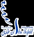 جامعة إبن طفيل.png