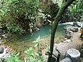 อุทยานแห่งชาติน้ำตกพลิ้ว จ.จันทบุรี (32).jpg