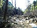 上山途中3 - panoramio.jpg