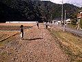 可部線廃線跡 - panoramio (6).jpg