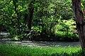台北植物園 - panoramio (1).jpg