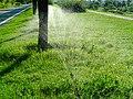 未央 渭河城市运动公园河堤路上的浇灌 04.jpg