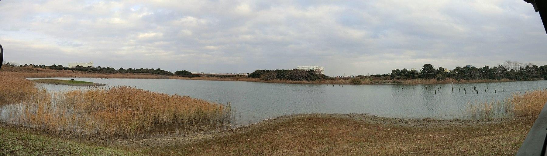 東京港野鳥公園 - panoramio (9).jpg