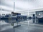 武汉天河机场T3航站楼出发层.jpg