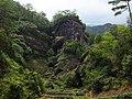 深山茶园 - Tea Garden in Remote Mountains - 2015.08 - panoramio.jpg