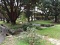 清大 Tsinghua University - panoramio.jpg