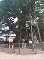 香川県善通寺市善通寺 - panoramio (28).jpg