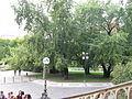 034 Náměstí Míru, park.JPG