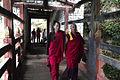 1020 Bhutan - Flickr - babasteve.jpg