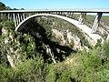12 0599m - Storms River Bridge, Eastern Cape (11388098975).jpg