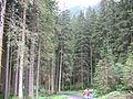 1393 - Nationalpark Hohe Tauern - Krimmler Wasserfälle.JPG