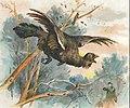 1905-scena-di-caccia.jpg
