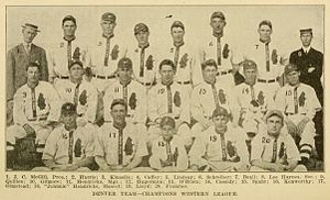 Denver Bears (Western League) - The 1911 Denver Grizzlies