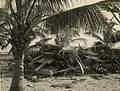 1944 hurricane effects in Key West MM008838-7x (15293575188).jpg