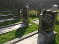 1953 flood victims gravestones De Waal Texel - 1.jpg
