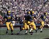 1959 Michigan football team