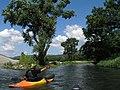 2007-08-13 Yorozui-River Canoe touring 万水川カヌーツーリング(カヤック壇上晴一)P8138733.jpg