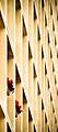 2008 Amsterdam 3269703201 290794187e o.jpg