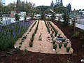 2012-12-04 Stormwater Bio-Treatment Area View4.jpg