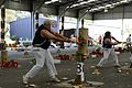 2013 Royal Melbourne Show - Wood Chopping Contest (9972557054).jpg