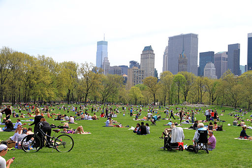 3021-Central Park-Sheep Meadow