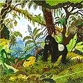 4-Gorille.jpg