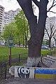 80-363-5003 Kyiv Kharkivsky Oak DSC 8509.jpg
