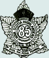 85capbadge.png