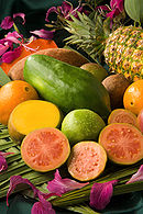 ARS tropical fruit no labels.jpg