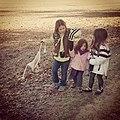 A Cahoon Instagram (16170733245).jpg