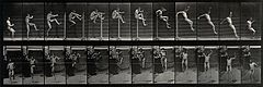 A man high jumping. Photogravure after Eadweard Muybridge, 1 Wellcome V0048644.jpg