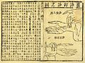 A treatise on the pulse published by Wang Wellcome L0031715.jpg
