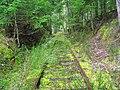 Abandoned Rails - panoramio.jpg