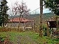 Abu, Vitze, Lazeti - სოფ. აბუ, ვიწე, ჭანეთი Çağlayan köyü, Fındıklı. Rize. Lazistan.JPG
