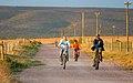 Access road to Rheeboksvlei farm house - panoramio.jpg