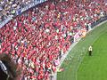 Adelaide United fans.jpg